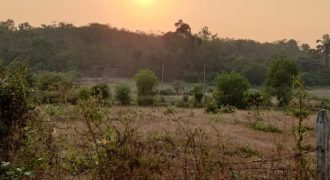 Plot available for sale at Dodamarg