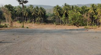 Plot available for sale at Bicholim